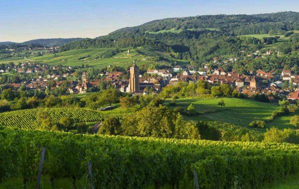 Arbois, la ville du vin