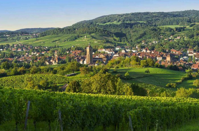 Arbois, city of wine